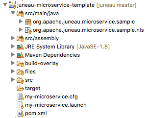 Setting up your Eclipse workspace - Juneau - Apache Software Foundation